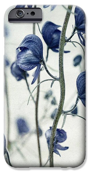 deadly beauty iPhone Case by Priska Wettstein