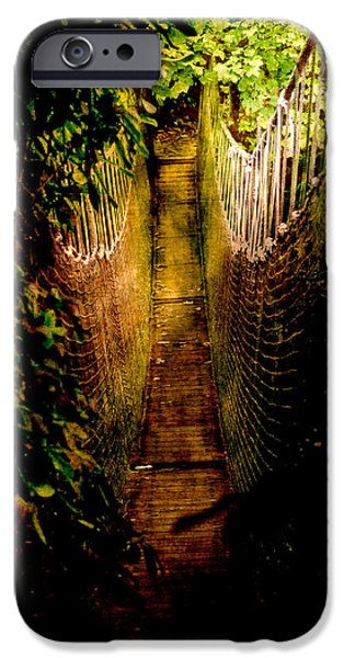 Pathway iPhone Cases - Deadly Path iPhone Case by Loriental Photography