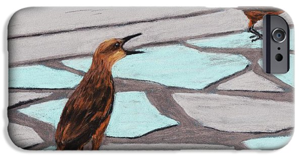 Animal Cards Pastels iPhone Cases - Death Valley Birds iPhone Case by Anastasiya Malakhova
