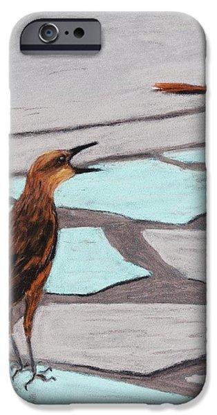 Death Valley Birds iPhone Case by Anastasiya Malakhova