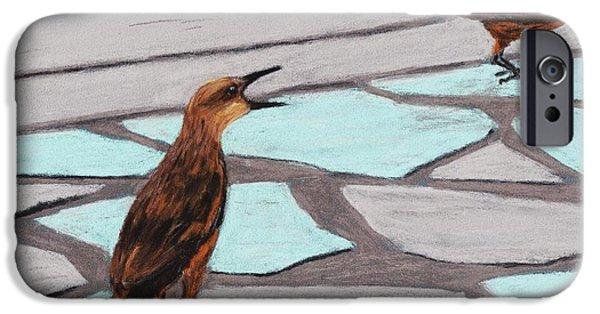Animal Print Pastels iPhone Cases - Death Valley Birds iPhone Case by Anastasiya Malakhova