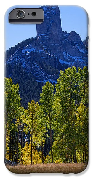 True Grit iPhone Cases - Debs Meadow iPhone Case by Jim Garrison
