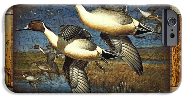 Cynthie Fisher iPhone Cases - Deco Pintail Ducks iPhone Case by JQ Licensing