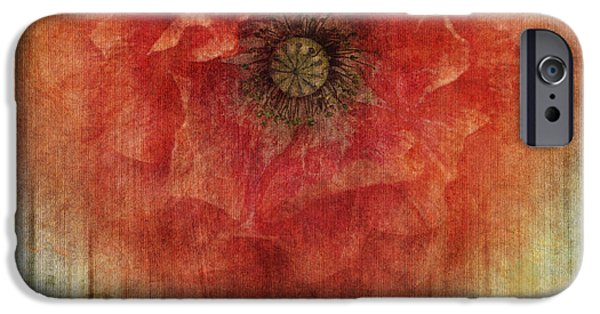Close Up Floral iPhone Cases - Decor Poppy Blossom iPhone Case by Priska Wettstein