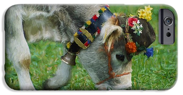 Brown Swiss iPhone Cases - Decorated Brown Swiss Cow  Eating Grass  iPhone Case by Heinz G Mielke