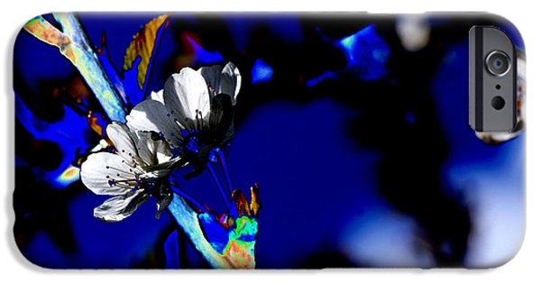 Abstract Flowers Images iPhone Cases - Deep blue iPhone Case by Carol Lynch