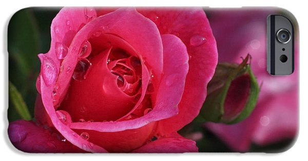 Rain Photographs iPhone Cases - Deep Pink Beauty iPhone Case by Rona Black