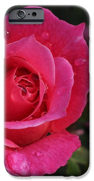 Deep Pink Beauty iPhone Case by Rona Black