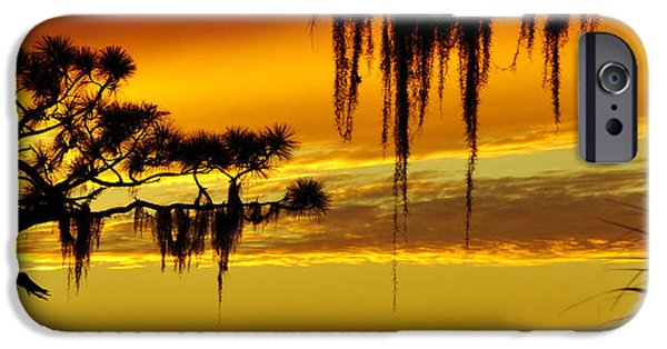 Landscape Poster Photographs iPhone Cases - Deep South iPhone Case by David Lee Thompson