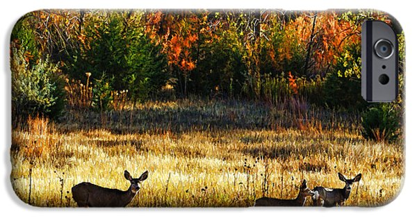 Burnt Umber iPhone Cases - Deer Autumn iPhone Case by Bill Kesler