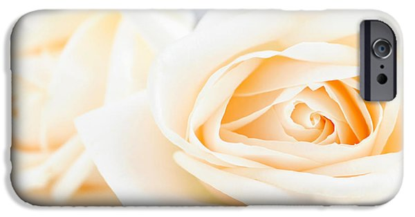 Tender iPhone Cases - Delicate beige roses iPhone Case by Elena Elisseeva
