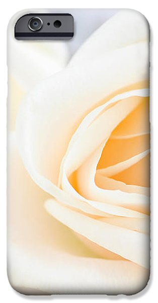 Delicate beige roses iPhone Case by Elena Elisseeva