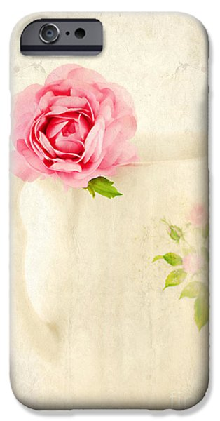 Delicate iPhone Case by Darren Fisher