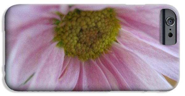 Flora Drawings iPhone Cases - Delicate Pink iPhone Case by Tara  Shalton