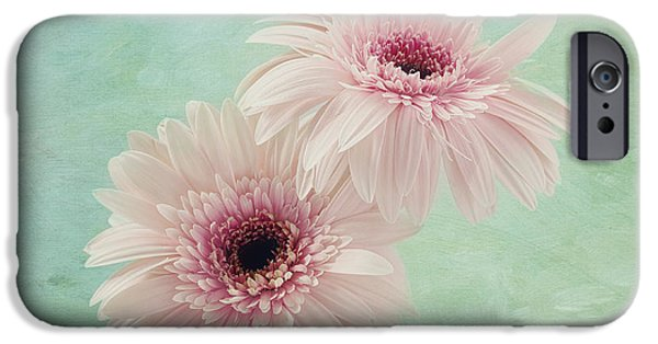 Innocence iPhone Cases - Delicate Pinks iPhone Case by Kim Hojnacki