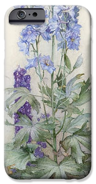 Delphiniums iPhone Case by James Valentine Jelley