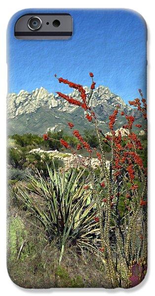 Las Cruces New Mexico Digital Art iPhone Cases - Desert Bloom iPhone Case by Kurt Van Wagner