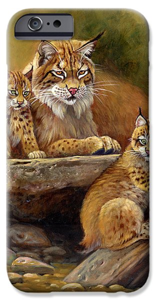 Bobcats Paintings iPhone Cases - Desert Day Care iPhone Case by Gene Dieckhoner