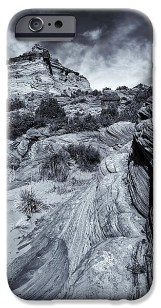 Coyote iPhone Cases - Desert Groove iPhone Case by Mike  Dawson