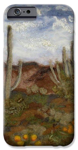 Universities Tapestries - Textiles iPhone Cases - Desert iPhone Case by Kyla Corbett
