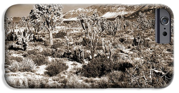 National Preserves iPhone Cases - Desert Landing iPhone Case by John Rizzuto