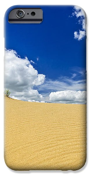 Desert landscape in Manitoba iPhone Case by Elena Elisseeva