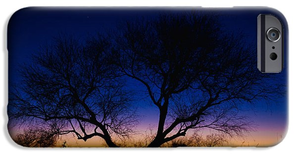 Lone Tree iPhone Cases - Desert Silhouette iPhone Case by Chad Dutson