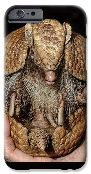 Recently Sold -  - Strange iPhone Cases - Desert Softball D6560 iPhone Case by Wes and Dotty Weber