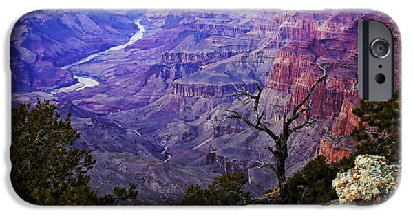 Grand Canyon iPhone Cases - Desert View Sunset iPhone Case by Priscilla Burgers