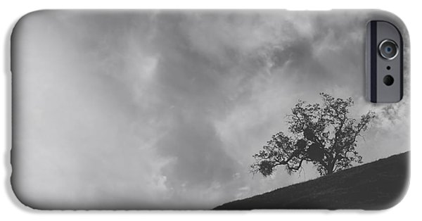 Lone Tree iPhone Cases - Despite the Pain iPhone Case by Laurie Search