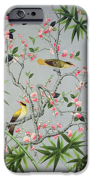 Birds Tapestries - Textiles iPhone Cases - Detail of the 18th century wallpaper in the drawing room photograph iPhone Case by John Bethell