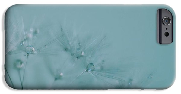 Torn iPhone Cases - Dew Drops on Dandelion Seeds iPhone Case by Marianna Mills