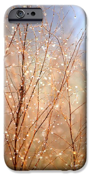 Dewdrop Morning iPhone Case by Carol Groenen