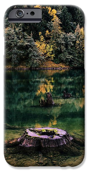 North Cascades iPhone Cases - Diablo Lake Tree Stump iPhone Case by Benjamin Yeager