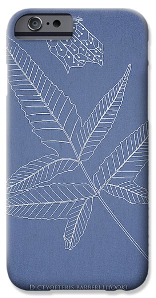 Botany Digital Art iPhone Cases - Dictyopteris barberi iPhone Case by Aged Pixel
