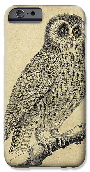 Physician Drawings iPhone Cases - Die Nacht Eule iPhone Case by Unknown Artist