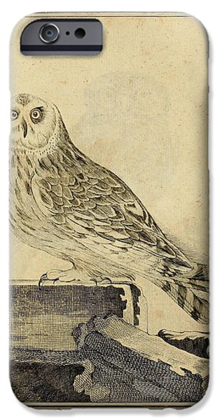 Physician Drawings iPhone Cases - Die Stein Eule or Church Owl iPhone Case by Unknown Artist