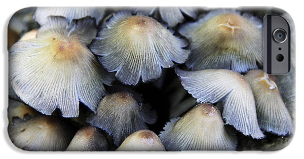 Purple Mushroom iPhone Cases - Different iPhone Case by Becca Brann