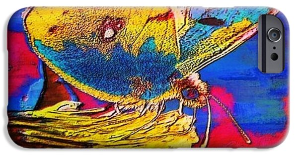 Painterartistfin iPhone Cases - DIGITAL Mixed Media BUTTERFLY iPhone Case by Maestro