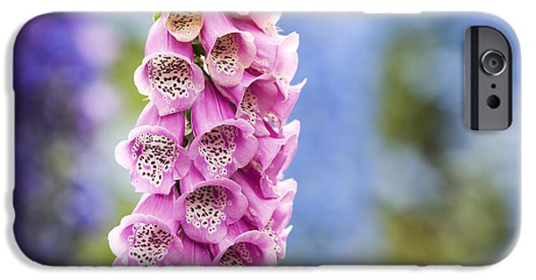 Foxglove Flowers Photographs iPhone Cases - Digitalis Purpurea Foxglove iPhone Case by Tim Gainey