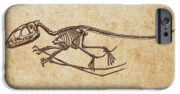 Dinosaur iPhone Cases - Dinosaur Pterodactylus iPhone Case by Aged Pixel