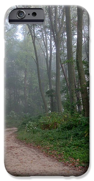 Dirt Path in Forest Woods with Mist iPhone Case by Olivier Le Queinec