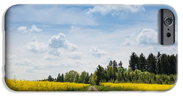 Rape iPhone Cases - Dirt Road Passing Through Rapeseed iPhone Case by Panoramic Images