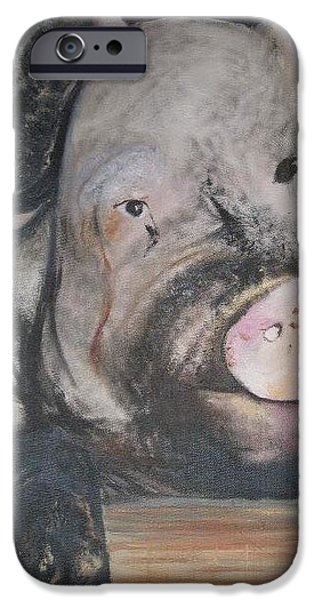 Dirty iPhone Cases - Dirty Pig iPhone Case by MaryEllen Frazee