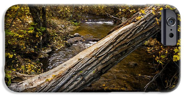 Blackstone River iPhone Cases - Discover Our Strengths iPhone Case by Jordan Blackstone