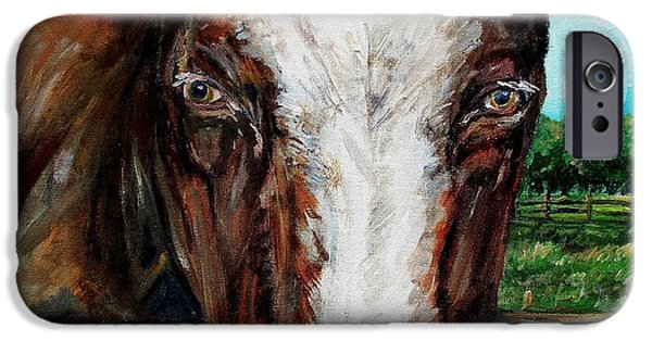 Maine Farms Paintings iPhone Cases - Divine Bovine iPhone Case by Shana Rowe