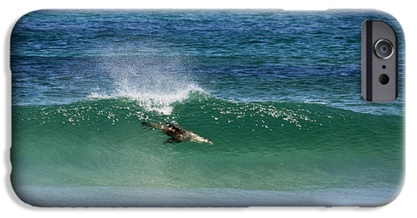 Sea Lions iPhone Cases - Diving Beneath the Curl iPhone Case by Mike Dawson