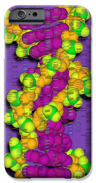 Sanger iPhone Cases - Dna With Autoradiograph iPhone Case by Scott Camazine