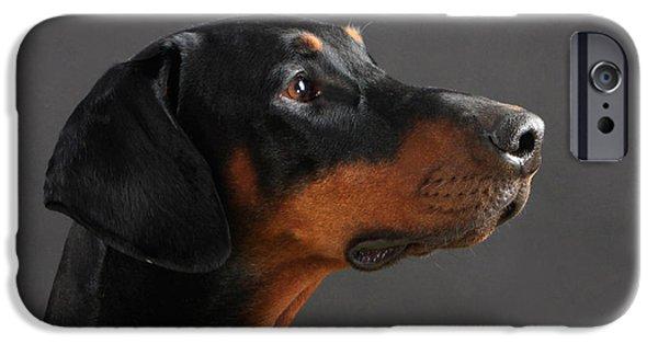 Doberman Pinscher iPhone Cases - Doberman Pinscher Dog iPhone Case by Christine Steimer