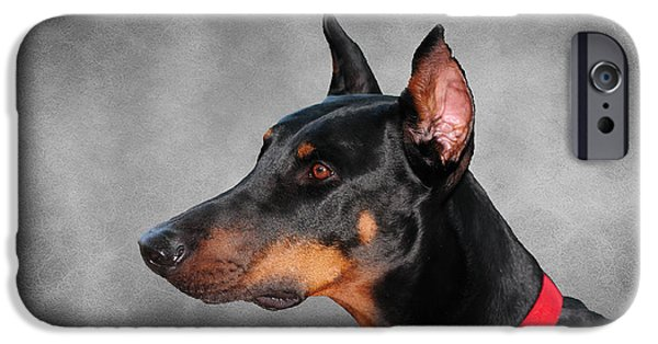 Police Dog iPhone Cases - Doberman Pinscher iPhone Case by Paul Ward
